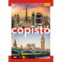 Copisto Gold A4 Notebook 29.7x21cm Ruled 140 Pages