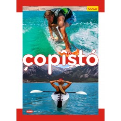 Copisto Gold A4 Notebook 29.7x21cm Unruled 140 Pages