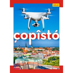 Copisto Gold A4 Notebook 29.7x21cm Ruled 172 Pages